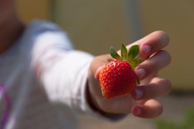 Prolećno voće
